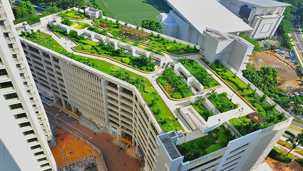 tejados-verdes-y-ahorro-de-energia.jpg3_